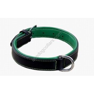 Plain Padded  Leather Dog Collar Chrome fittings: Black green