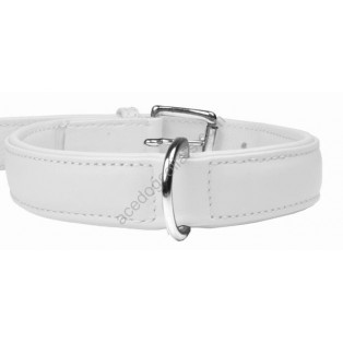 Plain Padded  Leather Dog Collar Chrome fittings