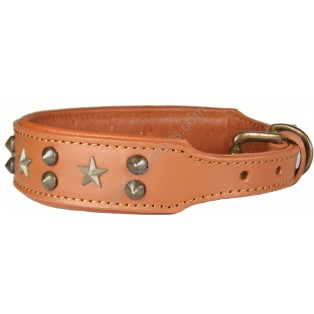 Padded LEATHER DOG COLLAR  : Tan with stars
