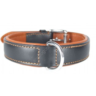Plain Padded  Leather Dog Collar Chrome fittings: Black Tan